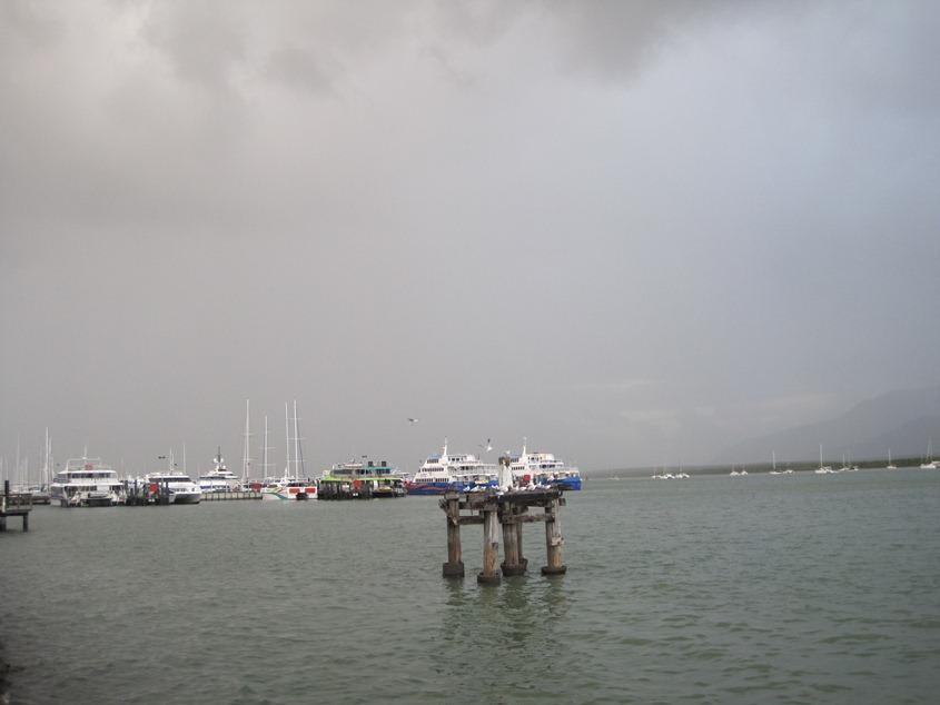 前方,海鸥和游艇码头