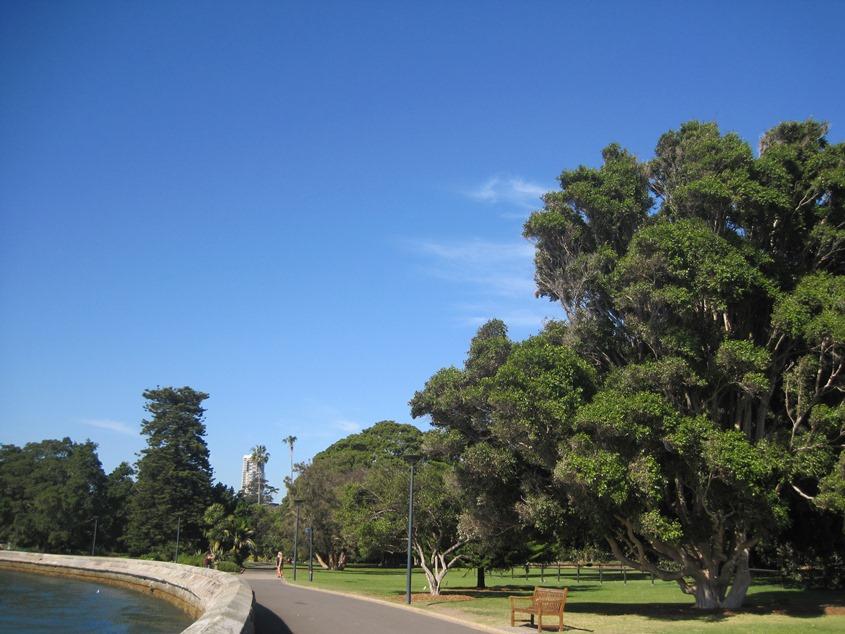 Farm bay,皇家植物园,天蓝蓝,水蓝蓝,绿树绿草